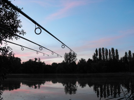 Rods-and-lake