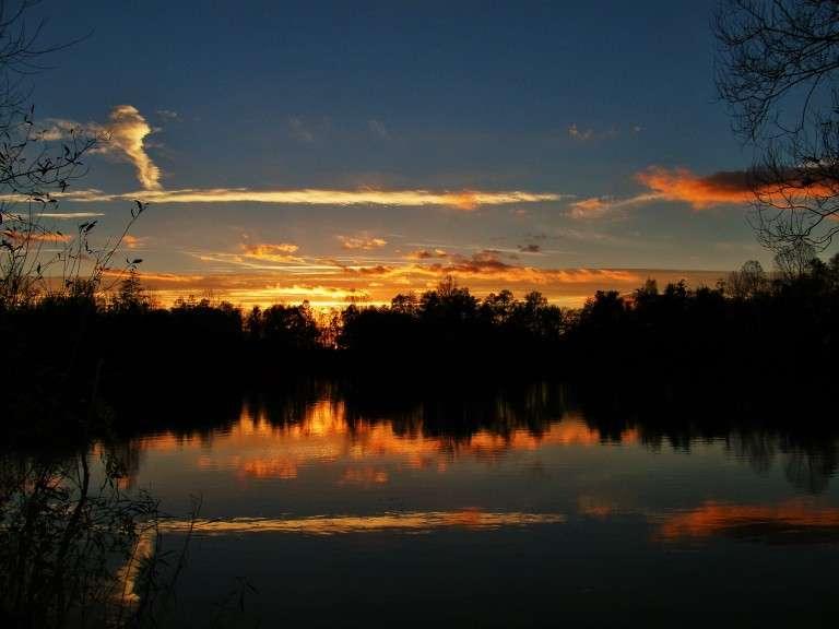 Les Quis Night Sky