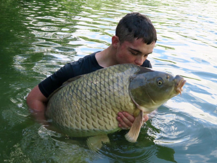 Les Quis Elf Lake 2017 Adam 51lb Common Carp