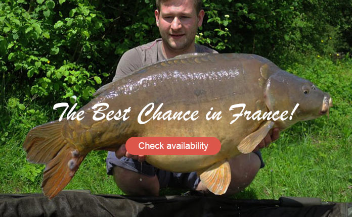 Les Quis Elf Lake 45lb Mirror Carp