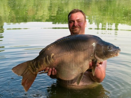 Les Quis July 2017 Bay Lake 49lb Mirror Carp