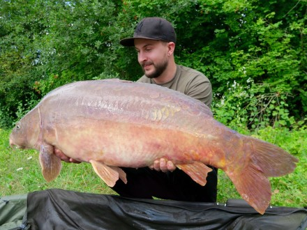 Les Quis Old Lake Tom 40lb Mirror Carp