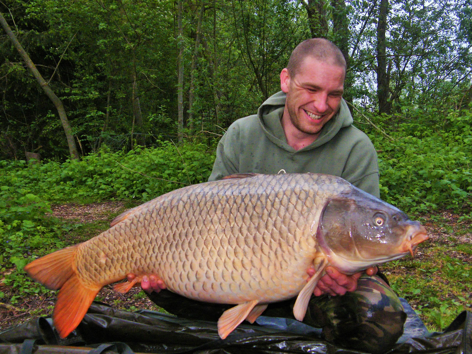 Rob with a 50lb Common Carp at Les Quisfrom