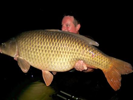 Les Quis 2017 49lb Common Carp The Old Lake
