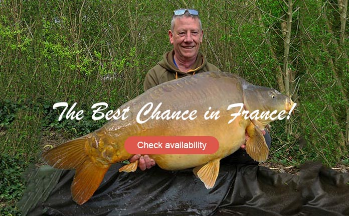 Les Quis Old Lake Tob 56lb Mirror Carp
